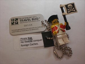 Pirate_Bug02