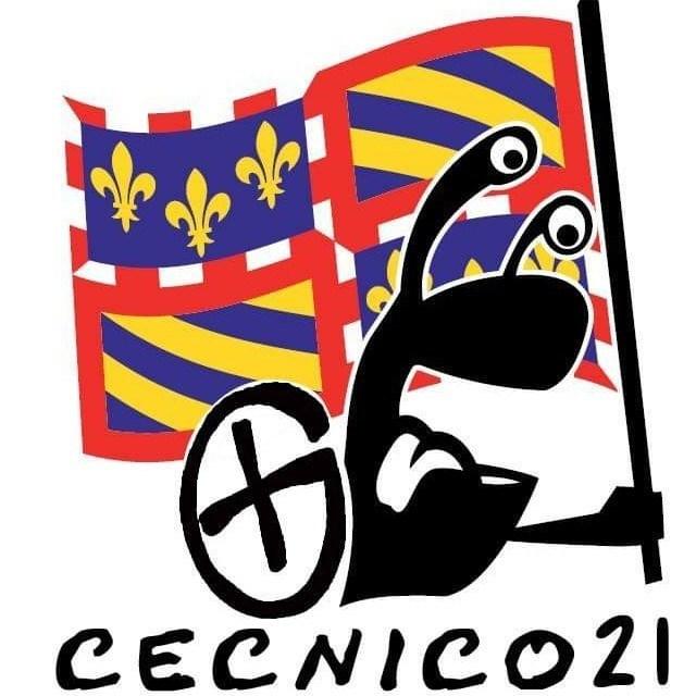 avatar de cecnico21