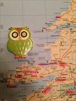 The Irish Owl