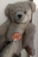 coin with bear