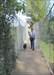 Mrs BVPete & Brutus on the suspension bridge