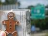 Gingerbread Man in Focus