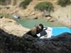 Bye bye picture - Fokia Beach, Rhodos