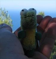 Al Gator starting his journey from Mallorca