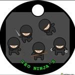 geo ninja's