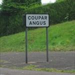 Couparangus
