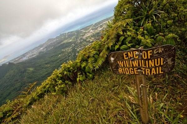 Image result for Wiliwilinui Ridge