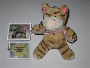 Three cats around the world - TravelBug