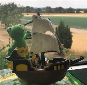 Ein kleiner Frosch auf großer Fahrt!