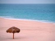 Brown Tan White Sand Is Made From Tiny Fragments Of Shell And Cs Mixed With Quartz The East Coast United States Has Some