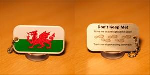 Wales Flag Tag