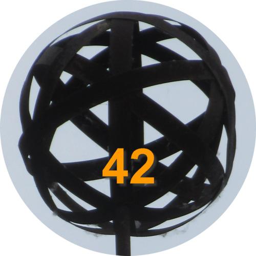 Perle 42