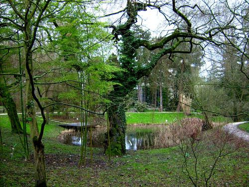 Gc114h1 universit de strasbourg 1 jardin botanique traditional cache in alsace france - Jardin botanique de strasbourg ...