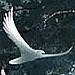 avatar de chrbayle
