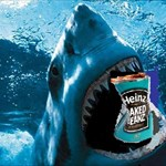 Sharks-N-Beans