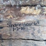 ShareBear64