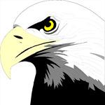 Soaring Eagle 7