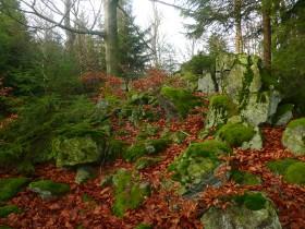 Na temeni Liščína