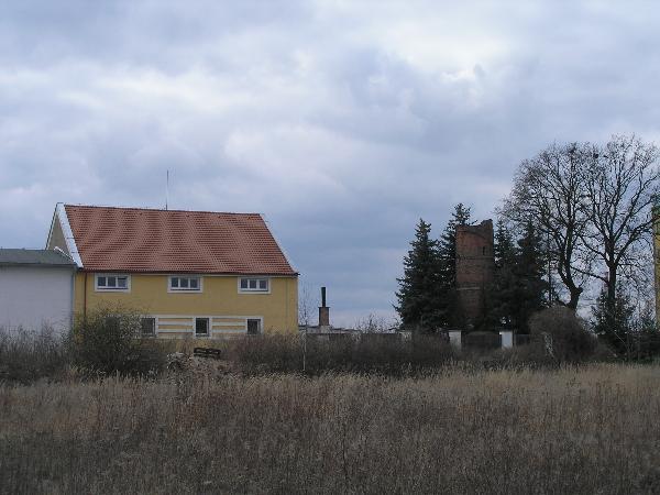 goldscheidrovka