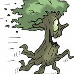 Stumpy75