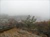 Eppstein im Nebel