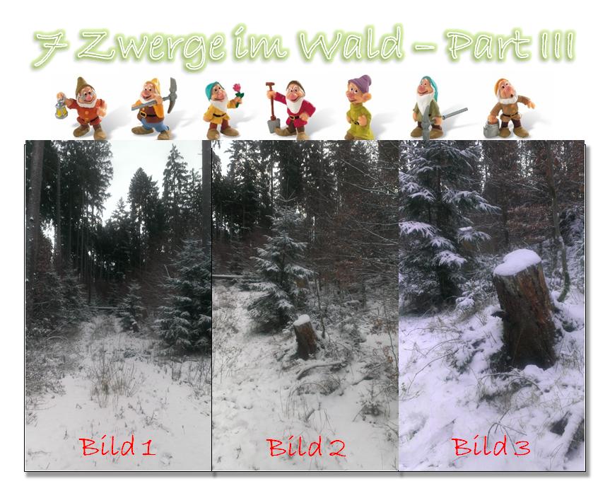 7 Zwerge im Wald - Part III