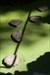Leira33 log image