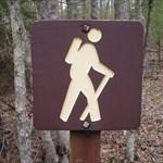 HikingFamilyof4