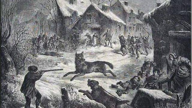 Gravure loup