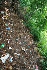 Nature and trash cans in the US...