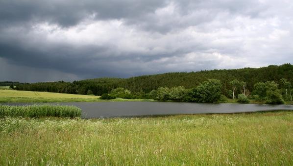Malý Pardouskův rybník