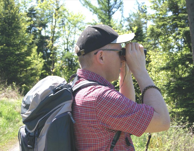 avatar de BeaglePapa61