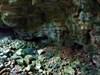 Cache Temática #3 - Halloween (Bruxas do Loureiro) log image