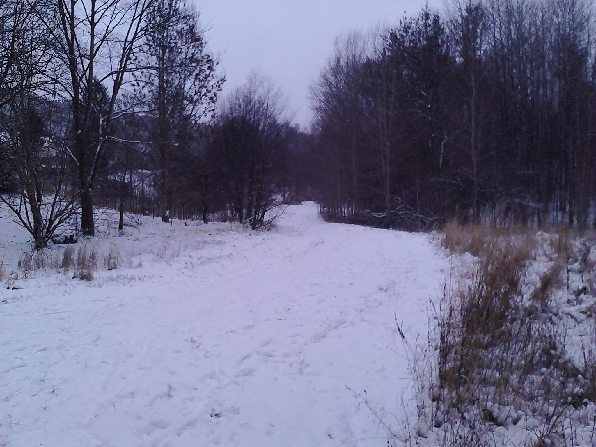 Ravinen på vintern