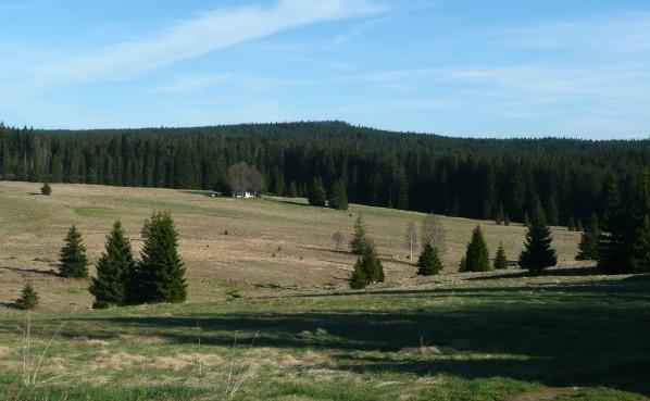 Čertův vrch od Filipovy Hutě