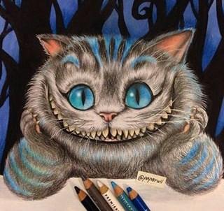avatar de PetitChat60