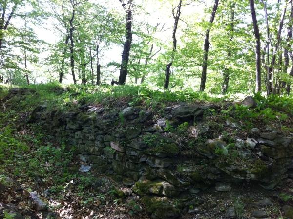Hradné ruiny