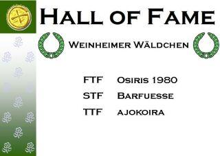 Weinheimer Wäldchen