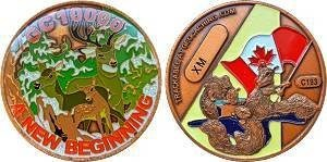 GC10000 Series C Geocoin