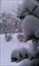 Schneeflöckchen, weiß Röckchen ;-)