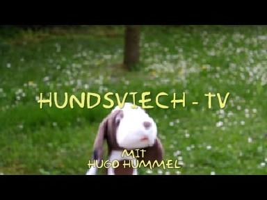Hundsviech - TV