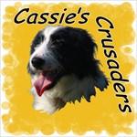 Cassie's Crusaders