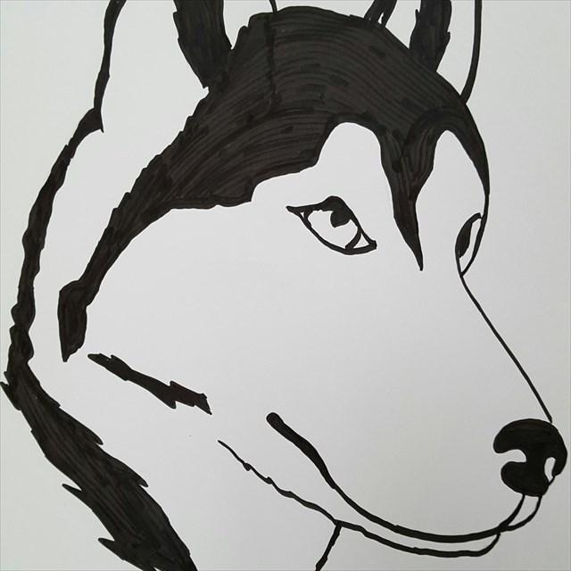 avatar de Beurdy