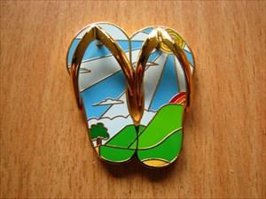 Summer Sunshine Flip Flop (1)