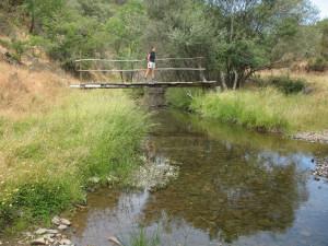 Pontes de madeira
