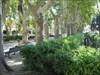 Les fontaines de Montpellier 4 log image