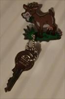 Key_001