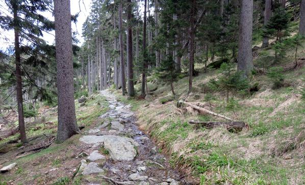 Kamenný chodník pod Ostrým