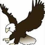 Eaglecacher