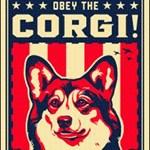 ObeyTheCorgi